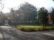 parco municipale (2)