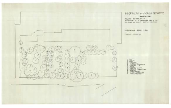 Franzato Mareno di Piave 1985 (2)