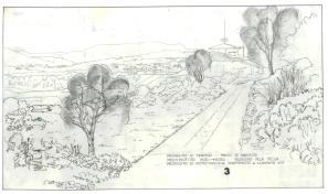 Di Martino Muscoline BS 1984 (3)