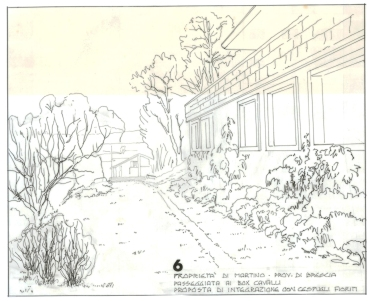 Di Martino Muscoline BS 1984 (6)