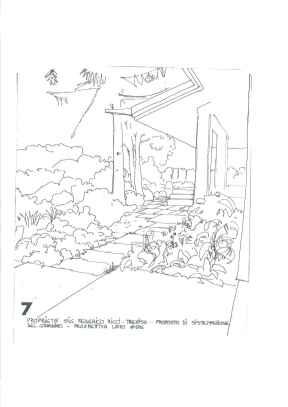 Ricci Treviso 1977 (7)